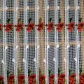 poppy curtain 50 inc height