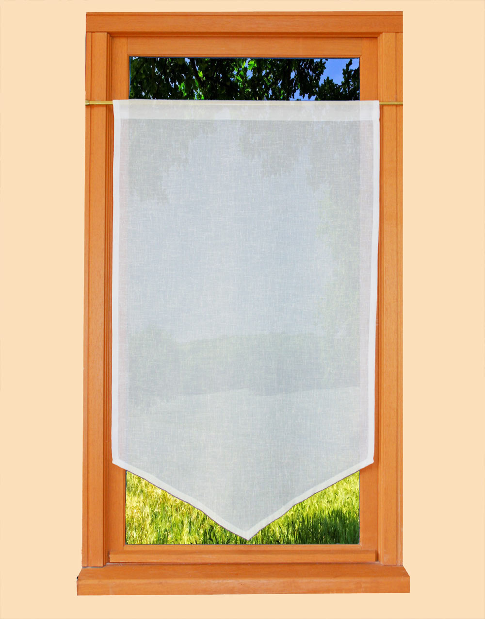 Ivory Curtain alone